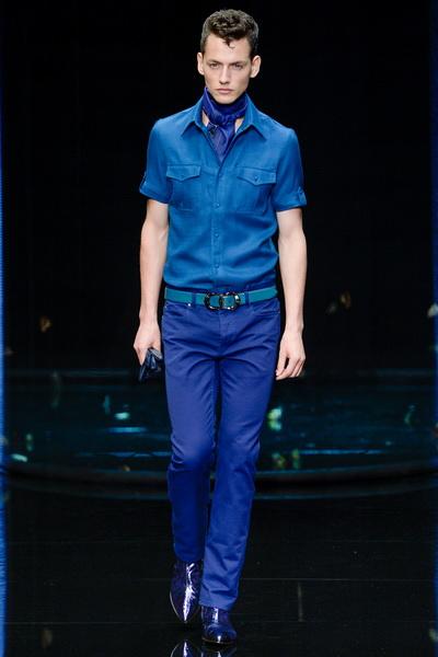 Мужская коллекция Roberto Cavalli весна-лето 2013